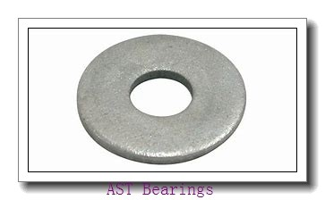 AST AST800 2825 plain bearings