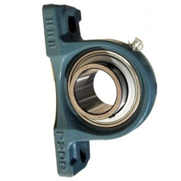 Pillow Block Bearing (SKF, NTN, ZKL, FYH, TR, FK, HCH, TIMKEN, NACHI, FKD, FS, UCP, UCT, UCX, UC, UK, UCPA, UCPH, NA,) and All Kinds of Bearings (UCP205,UCF205)