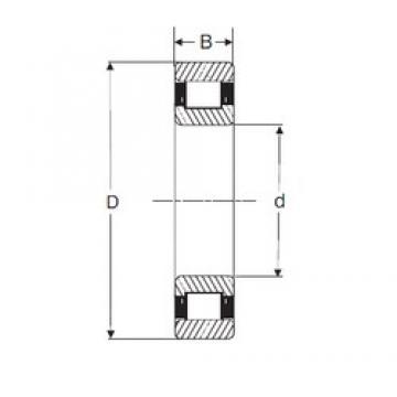 85 mm x 180 mm x 60 mm  85 mm x 180 mm x 60 mm  SIGMA N 2317 cylindrical roller bearings